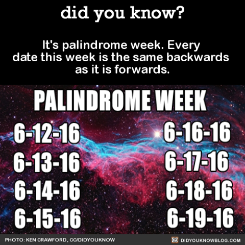 Palindrome-Week.png