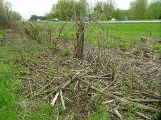 DSC01858 wide shot of highway fence destruction